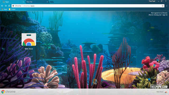 Coral Reef Chrome Theme