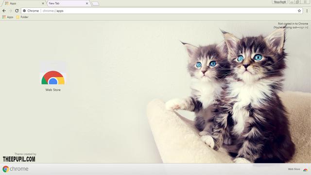 Kittens Chrome Theme