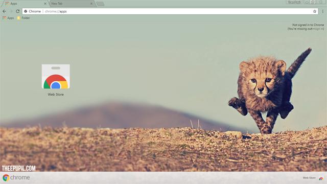 Cheetah Cub Chrome Theme