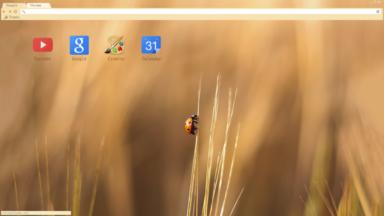 Ladybug Chrome Theme