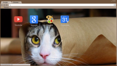 Cat In A Bag Chrome Theme