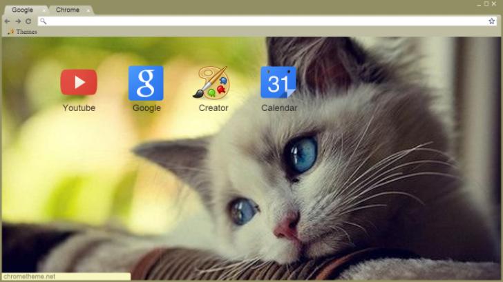 Blue Eyes Cat Chrome Theme