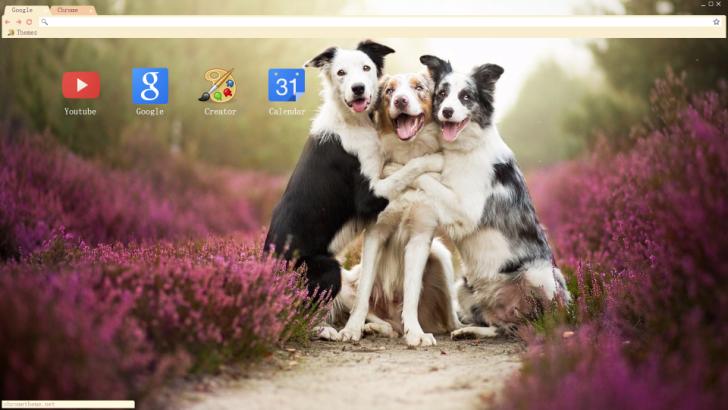 Dogs Chrome Theme