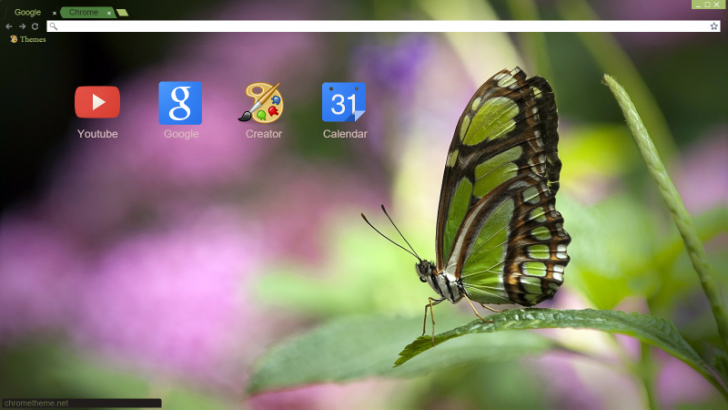 Green Butterfly Chrome Theme