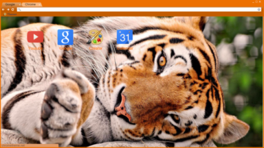 Content Tiger Chrome Theme