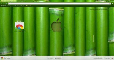 Apple Bamboo Chrome Theme