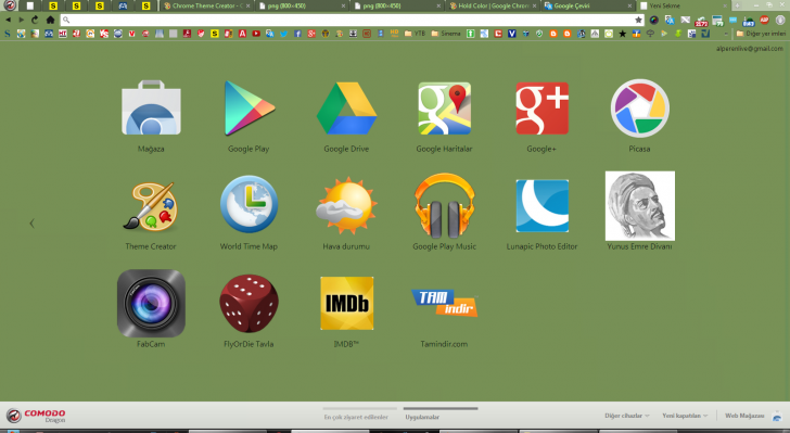 Hold Color Green Chrome Theme